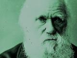 Borba za Darvina na Hemijskom