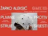 Zarko Aleksic, GMK